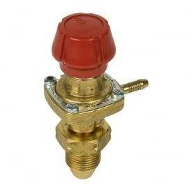 Bullfinch Variable Regulator 1051